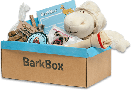 Gift Ideas for Dog Lovers: BarkBox — Your Dog's Friend