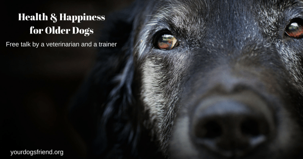 Health & Happinessfor Older Dogs (2)