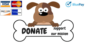 donate and support our mission
