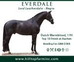 Hilltop-banner_USDF-Your-Dressage_300x250-Dec2019_Everdale (002)