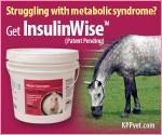 300×250-InsulinWise KPP