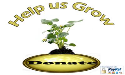 Donate to yourenglishsource.com button