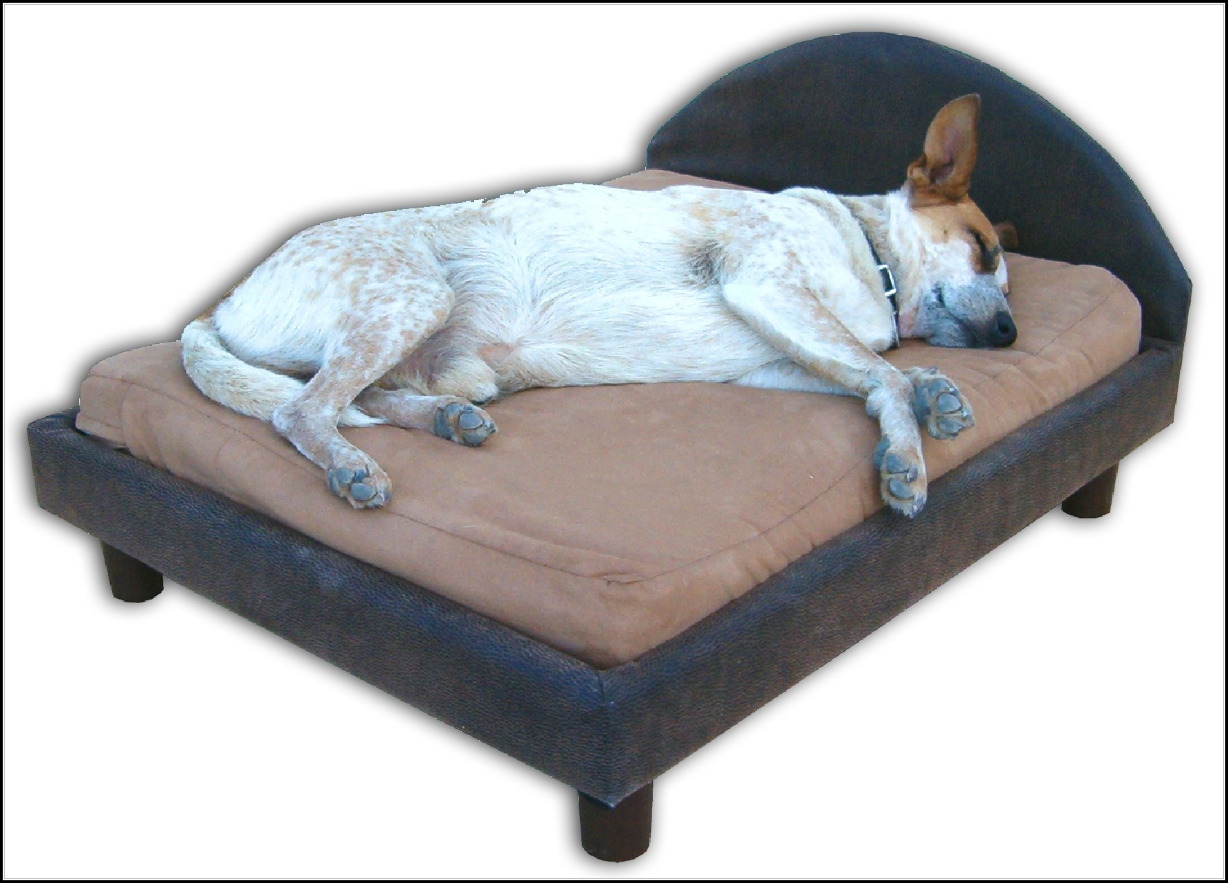 Memory Foam Dog Beds For Large Dogs