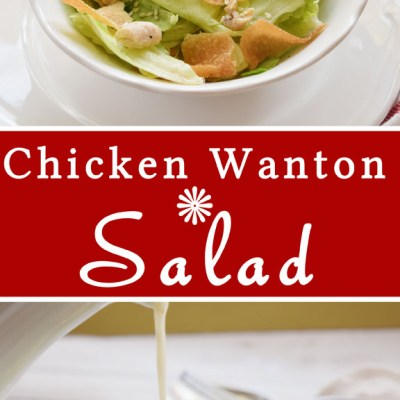Easy Chicken Wanton Salad