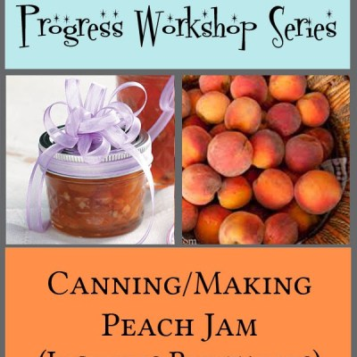 Young Women Personal Progress Workshop Series: Making Jam