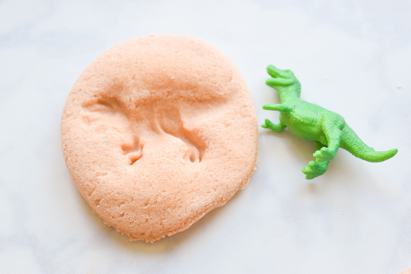 Make Your Own Dinosaur Fossils