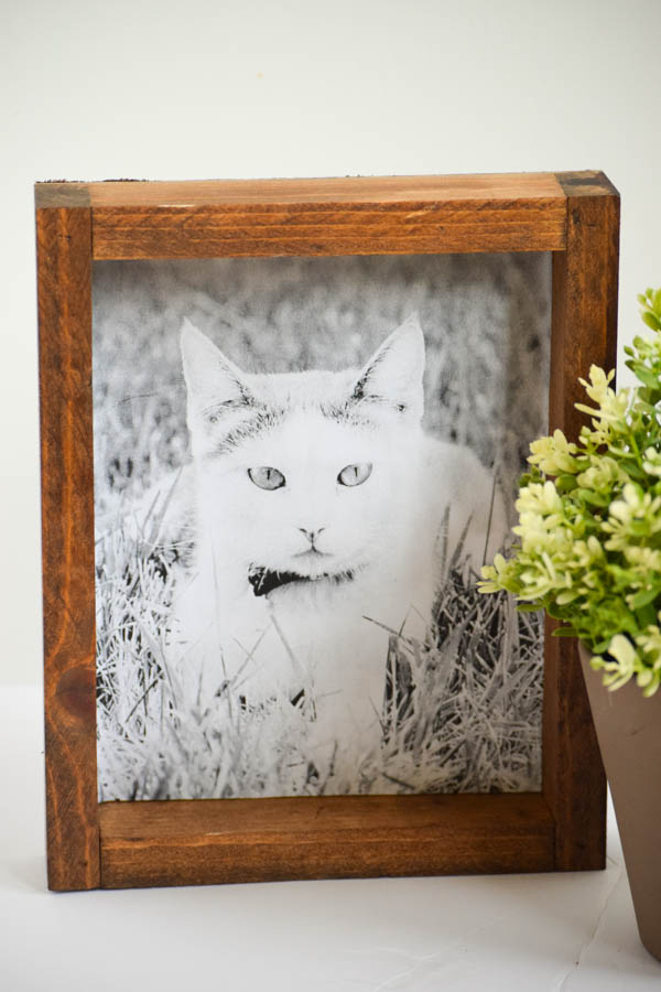 DIY Farmhouse Style Picture Frame for Pets