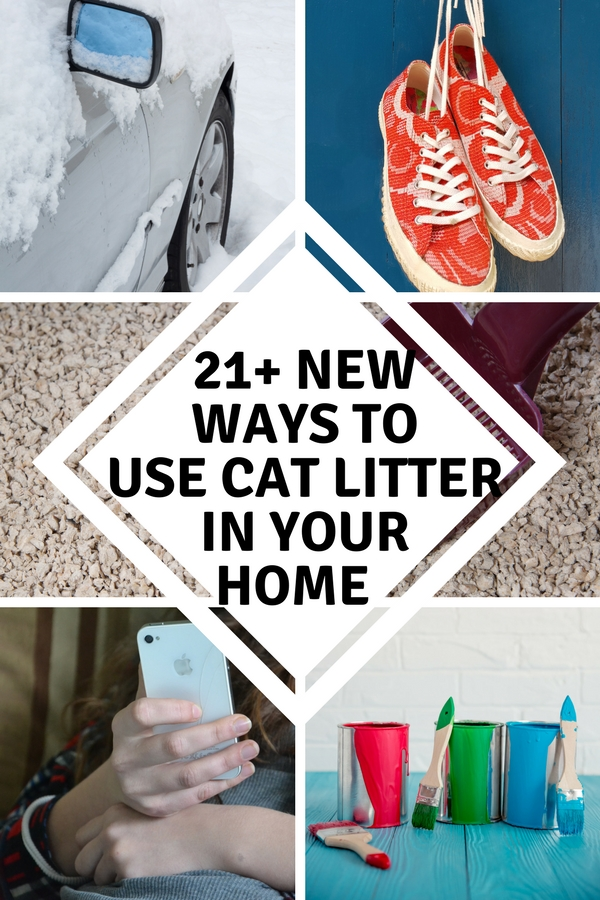 Did you know there are over twenty ways you can use cat litter in your home? From cleaning, crafting, stain removal, gardening, and deodorizing, you will never look at cat litter the same again! Here are 21+ New Ways to use cat litter in your home.