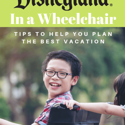 Navigating Disneyland in a Wheelchair