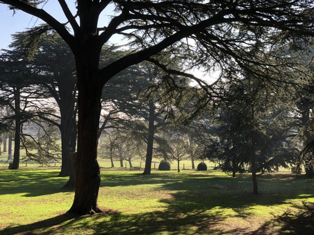 Wollaton Hall Gardens