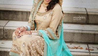 Bridal Maxis Long Dresses