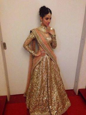 Luxury Colors Indian Lehenga Dresses For Brides 2016-17 3