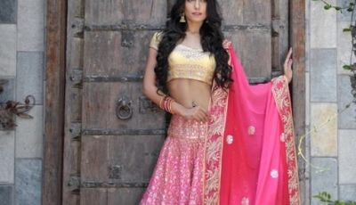 Luxury Colors indian lehenga Dresses
