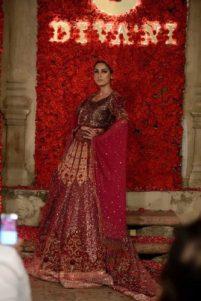 divani-bridal-couture-collection-winter-dresses-2016-17-4