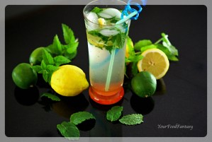 Virgin Mojito Recipe - Easy Mocktail Recipe | Your Food Fantasy