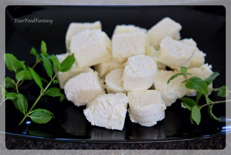 How to make paneer at home step by step recipe | Your Food Fantasy