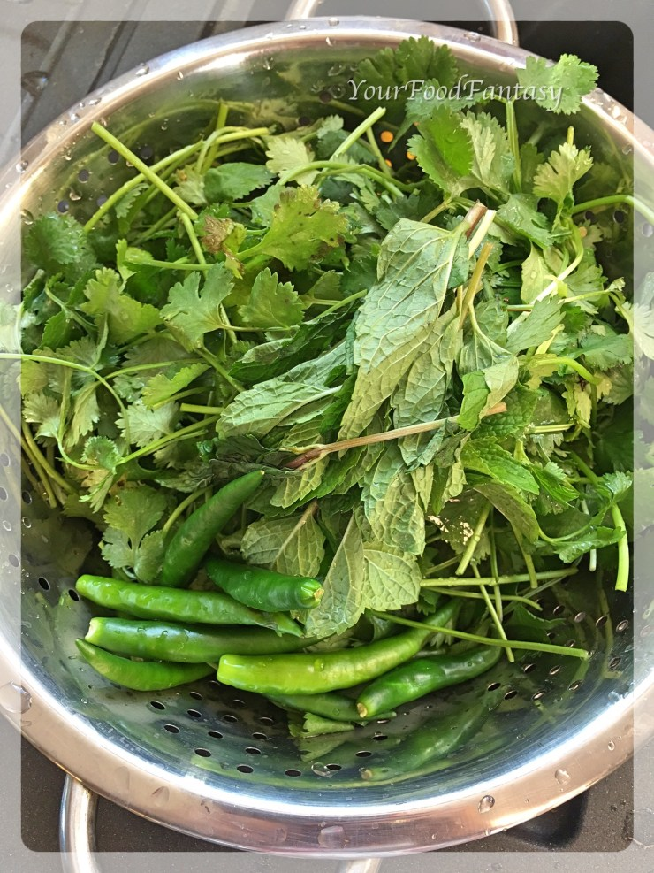 Mint Coriander and Green Chilli Chutney Recipe | YourFoodFantasy.com