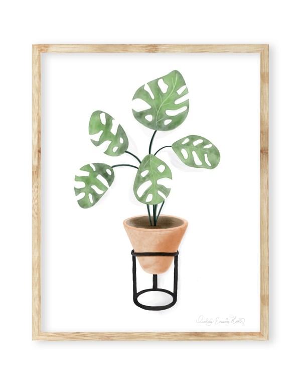Watercolor Split Leaf House Plant