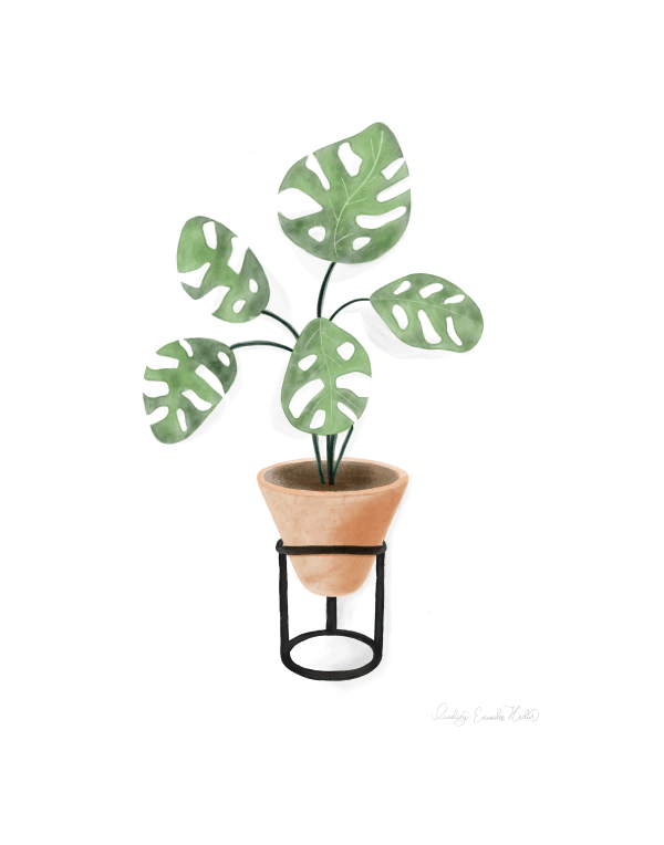 Watercolor Split Leaf House Plant