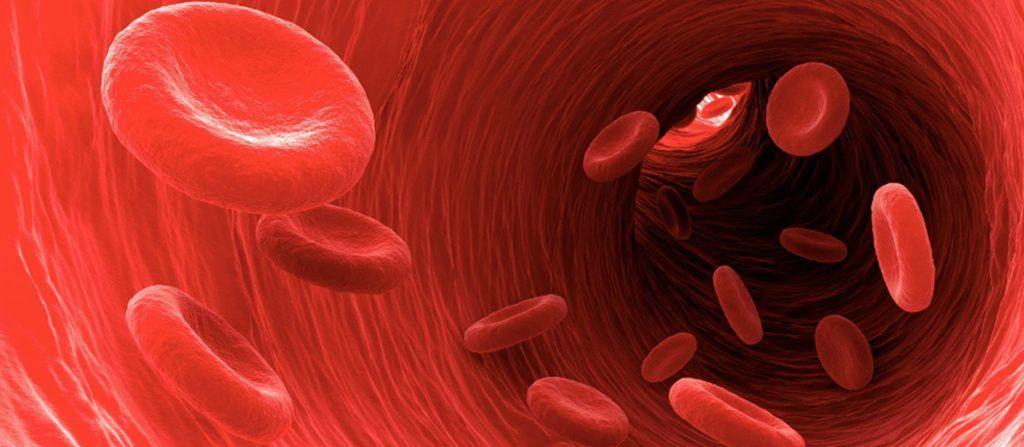 Aterosclerosi iniziamo subito la prevenzione