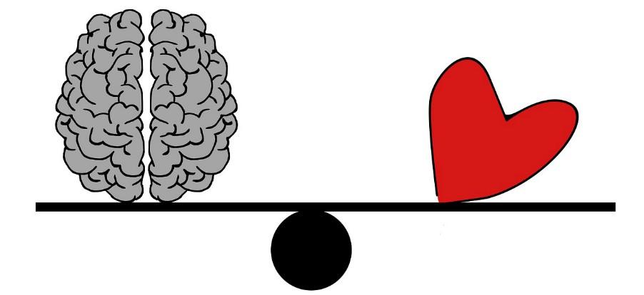 Magnesio minerale essenziale per cuore e cervello