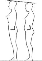 Eliminate Anterior Pelvic Tilt Whit Standing Desk