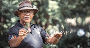 Aboriginal Bushtucker and wine tasting tour