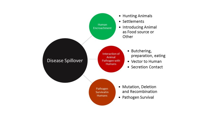 Ingredients of a Spillover Event.