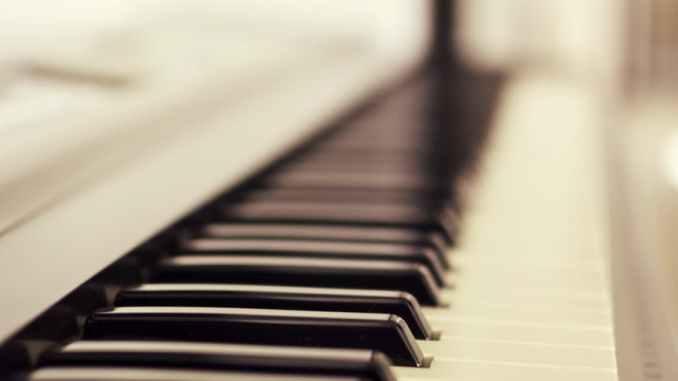 macro photo of piano keys