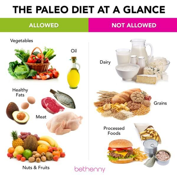 The Paleo Diet at a Glance