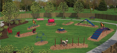An image of what an entire agility course might look like