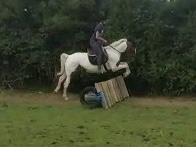 Foxhall Fred a Pony jumping a cross country fence