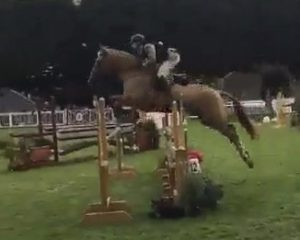Chestnut horse Barnaboy Peaches n Cream jumping at the rds 2018