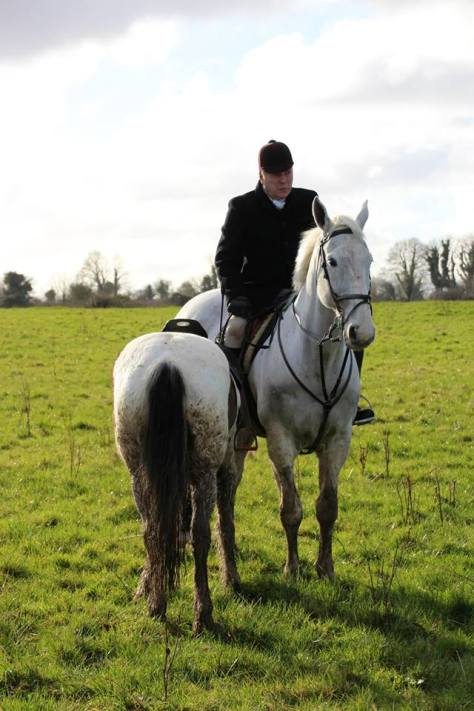 White horse standing whilst rider holding another horse