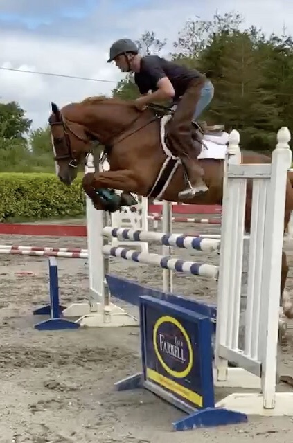 The horse Barnaboy Stuart Little jumping a fence