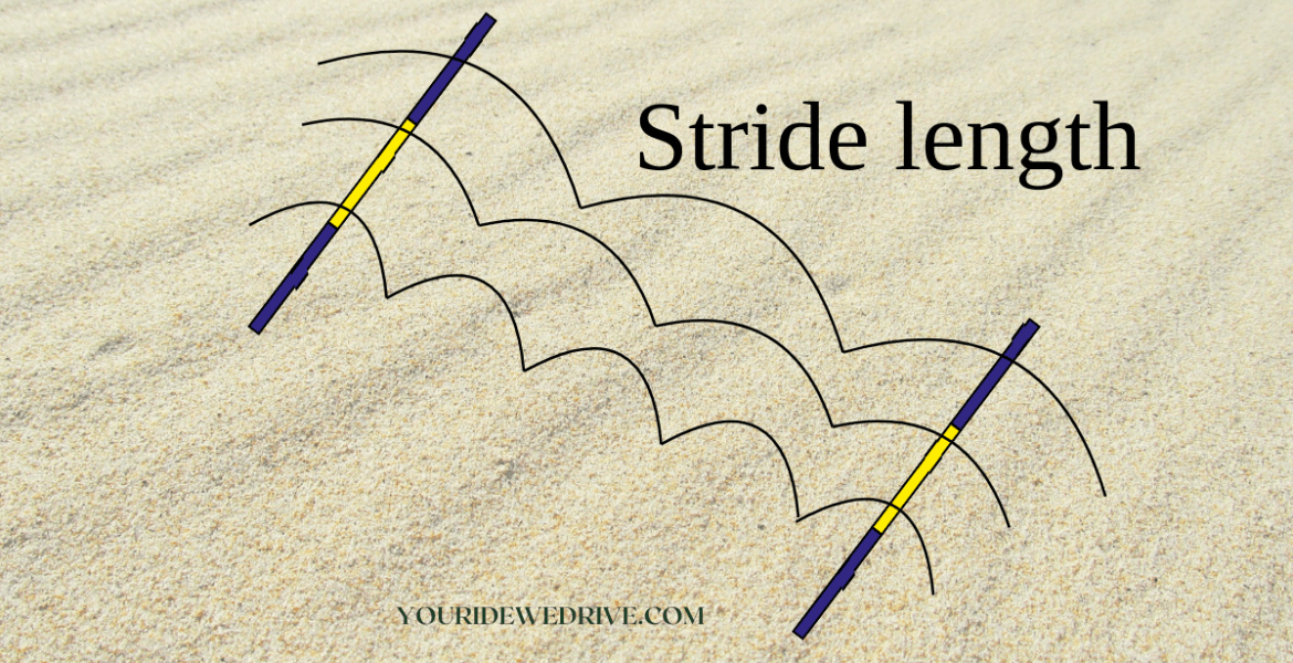 get to know your horses canter stride length
