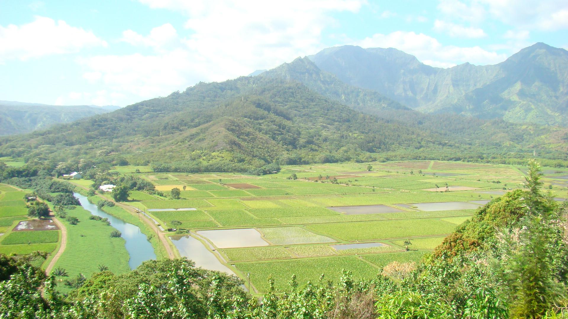 KAUAI Destination Specialist 038