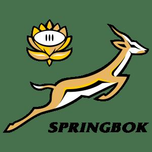 South Africa Springboks