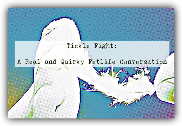 TICKLE FIGHT: A Real & Quirky Fetlife Conversation