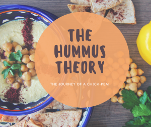 THE HUMMUS THEORY (1)