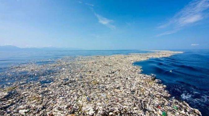 An Ocean Full of Plastic