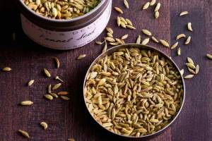 fennel-spice
