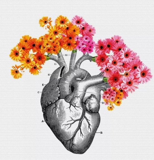 Human heart intelligence blooms