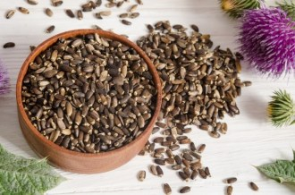 milk-thistle-seed