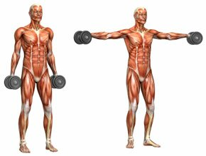 lateral deltoid raise