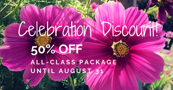 Celebration Discount