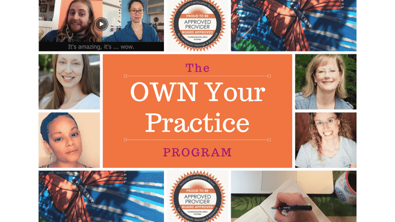 OWN Your Practice Program