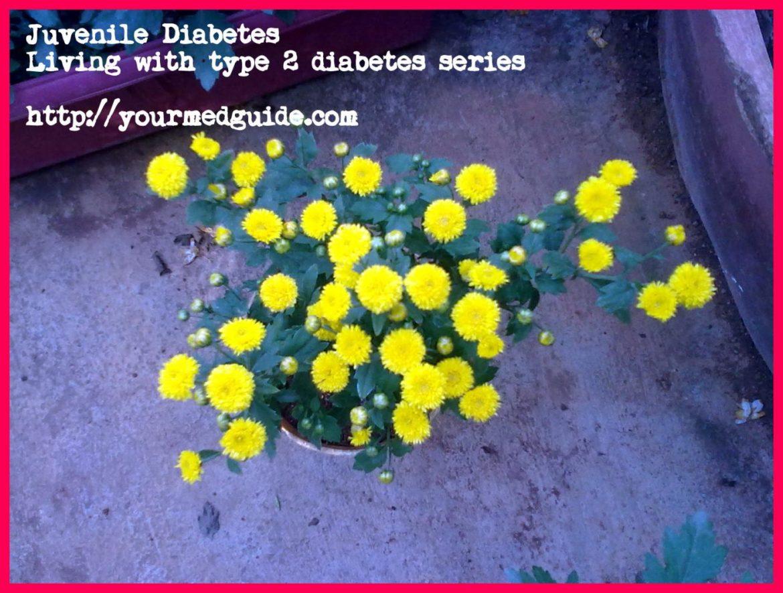Juvenile diabetes vidya sury