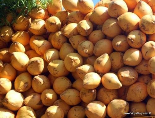 coconut oil benefits
