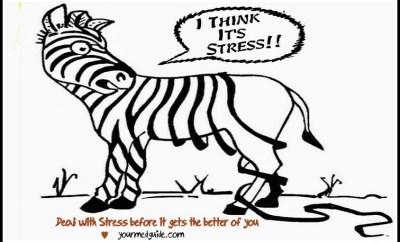 stress relief vidya sury